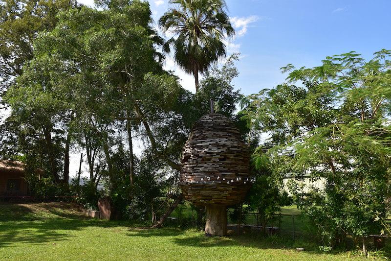 新竹輕親旅行 | 新舊融合.浪漫茶花茶園地景藝術輕旅行