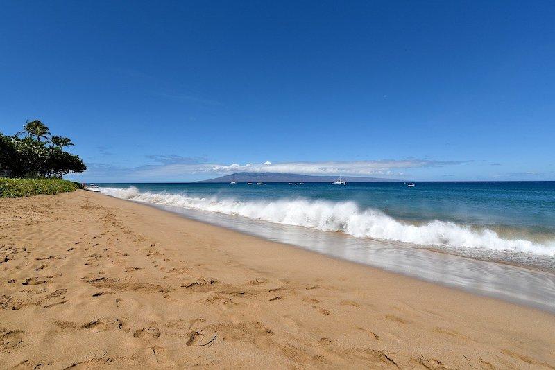美劇《白蓮花大飯店》:當夏威夷美景遇見美式嘲諷文化