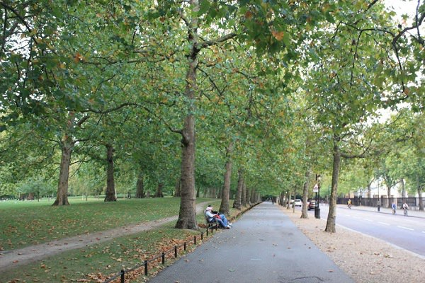 【英國】傍晚在倫敦街頭的小散步旅行