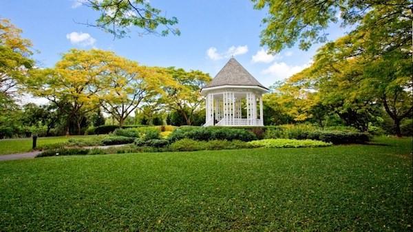 新加坡 | 貼近新加坡自然美,探訪3個清「新」秘境