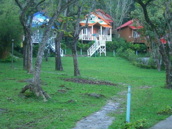 嘉義2日小旅行   與嘉義農場相遇的自然生態之旅